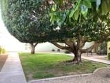 10937 Coggins Drive - Photo 32