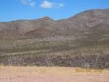 11825 Agua Verde Road - Photo 11
