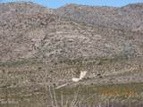 11825 Agua Verde Road - Photo 12