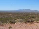 11825 Agua Verde Road - Photo 16