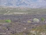 11825 Agua Verde Road - Photo 2