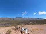 11825 Agua Verde Road - Photo 22