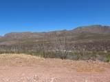11825 Agua Verde Road - Photo 3