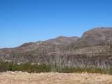 11825 Agua Verde Road - Photo 4