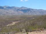 11825 Agua Verde Road - Photo 9
