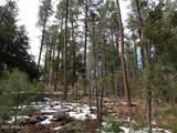 1262 Christopher Creek Loop - Photo 11