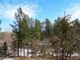 1262 Christopher Creek Loop - Photo 12