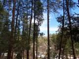 1262 Christopher Creek Loop - Photo 2