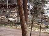 1262 Christopher Creek Loop - Photo 5