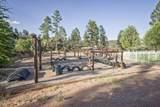 2804 Coyote Mint Circle - Photo 31