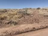 Arizona Rancheros #9 Lots  57 & 84 - Photo 11