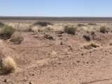 Arizona Rancheros #9 Lots  57 & 84 - Photo 12