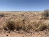 Arizona Rancheros #9 Lots  57 & 84 - Photo 13