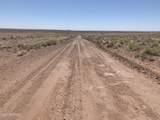 Arizona Rancheros #9 Lots  57 & 84 - Photo 2