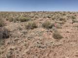 Arizona Rancheros #9 Lots  57 & 84 - Photo 4