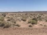 Arizona Rancheros #9 Lots  57 & 84 - Photo 6