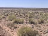Arizona Rancheros #9 Lots  57 & 84 - Photo 7