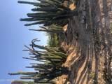 1409 Yucca Street - Photo 3