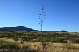TBD Adams Ranch Road - Photo 3