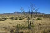 TBD Adams Ranch Road - Photo 5
