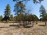 5691 Tamarron Drive - Photo 6