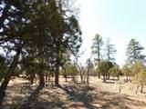 5691 Tamarron Drive - Photo 7