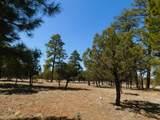 5691 Tamarron Drive - Photo 9