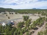 4565 Brackin Ranch Road - Photo 14