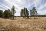 4565 Brackin Ranch Road - Photo 6