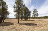 4565 Brackin Ranch Road - Photo 7