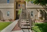 10410 Cave Creek Road - Photo 31