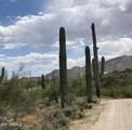 45419 Zorrillo Drive - Photo 40