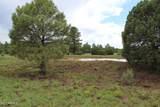9801 Porter Mountain Road - Photo 26