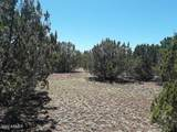 174 Co Rd 3187 9 Acres Lot  A - Photo 17