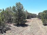 174 Co Rd  3187 9 Acres Lot C - Photo 18