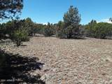 174 Co Rd  3187 9 Acres Lot C - Photo 19