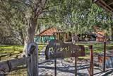 26640 Tarantula Trail - Photo 1