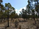 3848 Durango Drive Drive - Photo 2