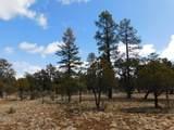 3848 Durango Drive Drive - Photo 4