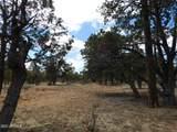 3848 Durango Drive Drive - Photo 6