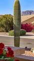 5766 Creosote Drive - Photo 42