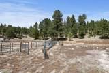 3156 Happy Trails Drive - Photo 3
