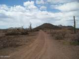 29780 Painted Wagon Trail - Photo 12