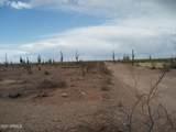 29780 Painted Wagon Trail - Photo 9