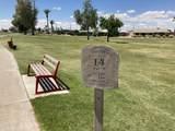 10334 El Rancho Drive - Photo 20