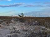 3503 Lone Ranger Road - Photo 12