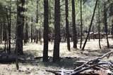 2207 Deer Ridge Drive - Photo 14