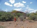 431 Via Loma Linda - Photo 12