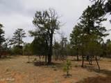 3352 Durango Drive - Photo 3