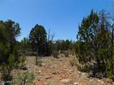 3517 Sunset Ridge Loop Loop - Photo 10